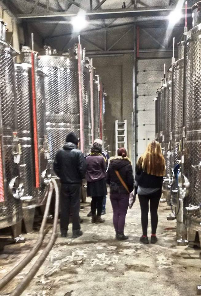 Goumenissa city- Wine tasting! - Peek at Greek - Greek language and culture school